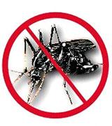 汕头除蚊子,汕头杀蚊子,汕头专业灭蚊子